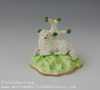 Alcock Miniature Sheep